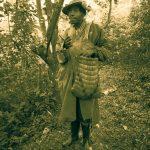 TIDES - Pygmy